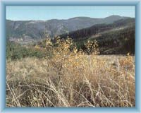 Lysa mountain