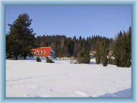 Solan - winter