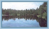 Lake Velké mechové jezírko
