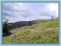 preserve Velká kotlina