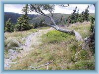 Nature trail Velká kotlina