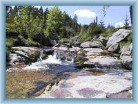 Rapids of the brook