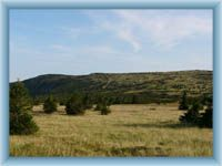 Meadow Pančavská louka