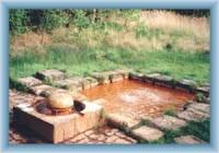 Peat-bog Soos