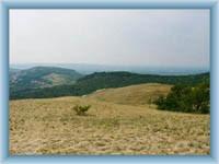 Natural reservation Děvín