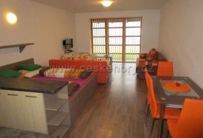 Apartment Ricky v Orlickych horach