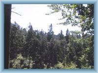Peaks of Jiráskové rocks
