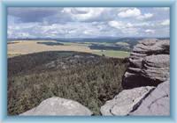 View from Broumovské rocks