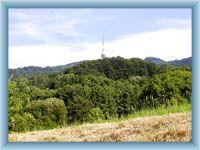 Bukova hora