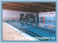 Volary - Swimming pool