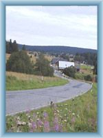 Road near Horská Kvilda