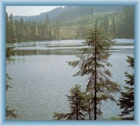 Lake Prášilské jezero