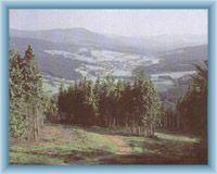 Sight from mountain Špičák to valley of Železná Ruda