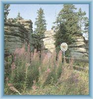 Rock formations on mountain Třístoličník