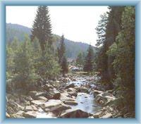 River Vydra near Antýgl