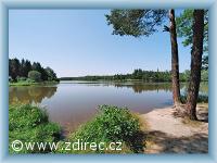 Pond Januš